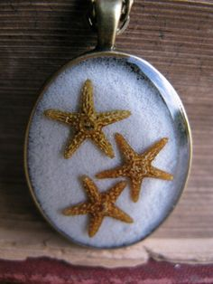 Adorable Real Starfish and Sand Resin Pendant For by ScrappinCop, $7.50