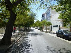 Santarém (Cidade), Caminho das Portas do Sol