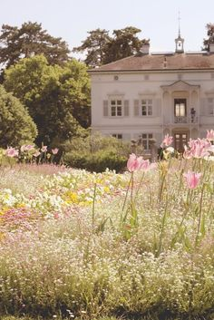 So pretty.  This reminds me of the house in Sense and Sensibility...
