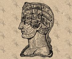 Vintage Human Phrenology Retro drawing image Brain Head picture Instant Download printable clipart Black and White digital graphic HQ 300dpi by UnoPrint on Etsy