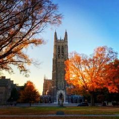 Never get tired of taking or seeing pictures of it. The crown jewel of Durham. Duke University Campus, College Campus, College Life, College Board, Dream Collage, College Aesthetic, Duke Blue Devils, Duke Basketball, Durham