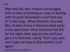 Haha! That's sweet! I can just picture Mrs. Hudson and John sitting on a couch knitting while they watch crappy TV.