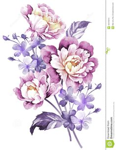 Watercolor Illustration Flower In Simple Background - Download From Over 55 Million High Quality Stock Photos, Images, Vectors. Sign up for FREE today. Image: 43419314