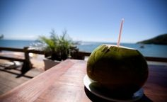 Nichts erfrischt mehr als eine Kokosnuss.
