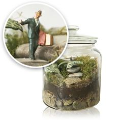 stairway to heaven - terrarium with a story - glass jar with transparent lid - Pinned by Storyplanter.com