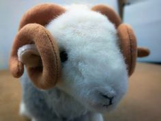 This fella's been struttin' his stuff around the office... #ComingSoon #WhosTheDaddy #herdy #herdwick #sheep #lakedistrict #limitededition #giftideas