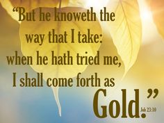 Bible Verses Kjv, Powerful Scriptures, King James Bible Verses, Prayer Verses, Bible Verses Quotes, Scripture Art, Word Of God, Thy Word, Dios