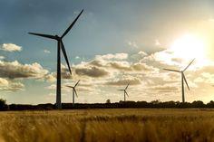 windpark_gegenlicht