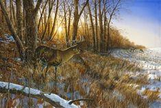 """Song in the Mist Elk Print By Jim Hansel  12/"""" x 7.75"""