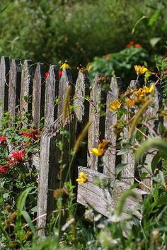 I section of weathered cedar fence in the middle of the butterfly garden. Garden Fencing, Garden Art, Garden Design, Landscape Design, Country Fences, Rustic Fence, Cedar Fence, Fence Gate, Old Fences