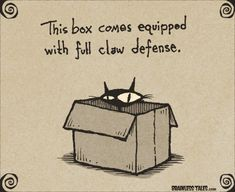 Box Defense