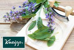 Maak ook gebruik van lavendel in de keuken!   Verse lavendelbloemen bijvoorbeeld kun je toevoegen aan salades.   Hak ze van tevoren wel eerst fijn.