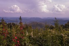 Donna Collins- Fine Art America-Rise Above-Blue Ridge Parkway- Boone, NC - Print available for purchase