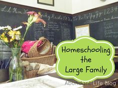 Sometimes, raising and homeschooling our 8 kids (ages 21 to 2) seems totally manageable - even easy - especially when compared to other, larger families made up primarily of younger kids. Younger ...