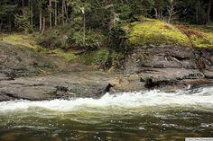 Englishman River (Photo by Gerry Bates). #ExploreCanada #exploreBC #exploreVancouverIsland #myPQB