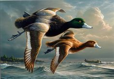 Free Ducks Clipart. Free Clipart Images, Graphics, Animated Gifs, Animations and Photos.