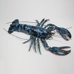 Betsey Rice Ceramic Sculpture | From the Sea