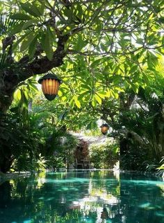 25 natural swimming pool designs for your small backyard . - 25 natural swimming pool designs for your small back yard 25 natural swimming - Spa Design, Villa Design, Home Design, Modern Design, Design Ideas, Design Inspiration, Design Hotel, Lobby Design, Travel Design