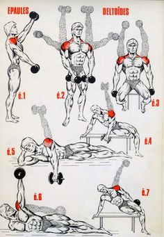 Muscle & Fitness : Programme musculation épaules – Keep up with the times. Gym Workout Tips, Dumbbell Workout, At Home Workouts, Workout Fitness, Fitness Exercises, Workout Challenge, Deltoid Workout, Week Workout, Workout Men