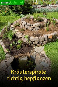 Bylinnou spirálu správně připravte: vhodná léčivá a rostlinná rostlina pro bažinatou oblast, vlhkou zónu, střední zónu a středomořskou zónu.