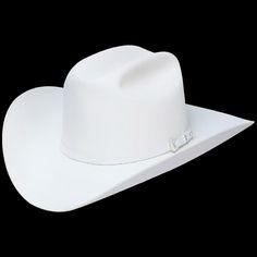 3e9337d7fa78e 10x Stetson Shasta - Stetson is the standard in hats
