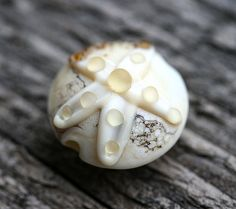 Etched Handmade Lampwork bead Beige beach glass bead  by MayaHoney, $8.00