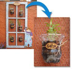 A horta vertical na janela de demolição também recicla garrafas pet