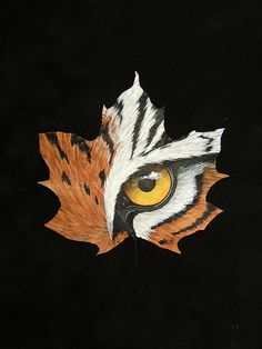 Tiger eye painted on maple leaf - Malerei Feather Painting, Feather Art, Painting & Drawing, Painting On Leaves, Dry Leaf Art, Maple Leaf, Fall Art Projects, Tiger Art, Leaf Crafts