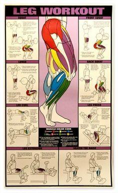 Leg Workout Chart - Exercise.com - Peg It Board