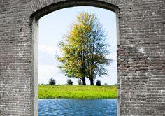 Look through (© susanhol.nl)
