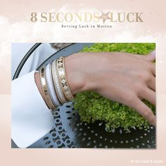 Send lucky messages to your loved ones with your own poetic 8-second-video #8secondsofluck