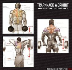 Personal Trainer - Trap and Nack Workout