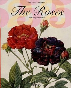 Pierre-Joseph Redouté | The Roses. The complete plates