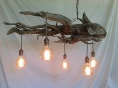 """Driftwood Chandelier """"Lake Urchin"""" with Five Lights"""