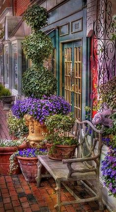 Beautiful King Street floral display in Alexandria, Virginia •