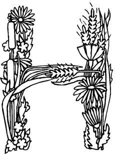 alphabet flower v coloring pages ketter