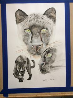 A commission for a client. Black Panther, Watercolor Paintings, Illustration, Artwork, Work Of Art, Water Colors, Auguste Rodin Artwork, Black Panthers, Artworks
