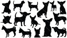 Chicuahua Silhouette Vector Graphics
