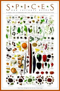 spices   Posters - Spices and Culinary Herbs Poster I love this poster.