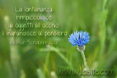 Arthur Schopenhauer - La lontananza rimpicciolisce gli oggetti all'occhio, li ingrandisce al pensiero.   #Schopenhauer, #lontananza, #malinconia, #liosite, #citazioniItaliane, #frasibelle, #ItalianQuotes, #Sensodellavita, #perledisaggezza, #perledacondividere, #GraphTag, #ImmaginiParlanti, #citazionifotografiche,