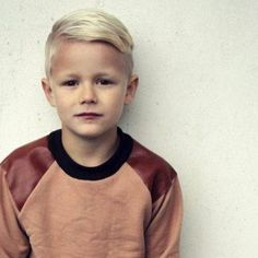 Little Boy Short Hairstyle1 Photo 2014