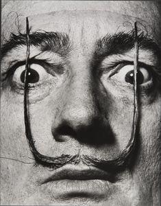 """""""Plantées comme deux sentinelles, mes moustaches défendent l'entrée de ma personne"""", Dalí's Mustache 1953-1954 Philippe Halsman"""