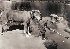 Card: Helpfull #pitbull dog, #child playing #golf