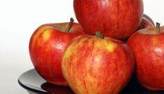 Tren.co.id,Apa Benar Jika Rutin Makan Apel Bisa Mencegah Penuaan Dini? Simak Penjelasannya –Manfaat mengonsumsi buah sangat beragam untuk kesehatan. Bukan hanya sumber vitamin dan serat, rutin mengonsumsi apel ternyata juga bisa mencegah penuaan dini. Menurut Guru Besar Fakultas Ekologi...
