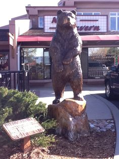 Tree stump carving.  Bear in town of Niwot, CO.