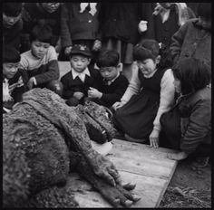 Dealing with the tragedy of Godzilla's apparent death . . .sad photo...