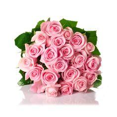 26 Fantastiche Immagini Su Il Galateo Dei Fiori Flowers Beautiful