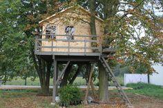 Kiedy małe dziecko bardzo marzy o domku na drzewie, trudno nie wyjść mu naprzeciw. Niektórzy nasi klienci w praktyczny sposób ułatwiają sobie pracę umiejscawiając gotowe domki drewniane dostępne w naszym sklepie na stelażu przymocowanym do drzewa.Fot. http://www.gardemi.pl