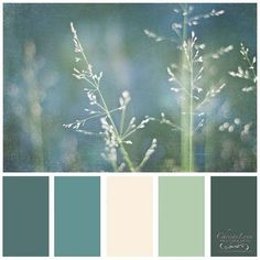 Design Seeds for all who color tuscan hues ❤️ liked on Polyvore featuring design seeds, color, color palettes, backgrounds and seeds
