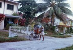 Old Penang Butterworth, The Old Days, Southeast Asia, Vintage Photos, Schools, Singapore, Vietnam, Past, Old Things